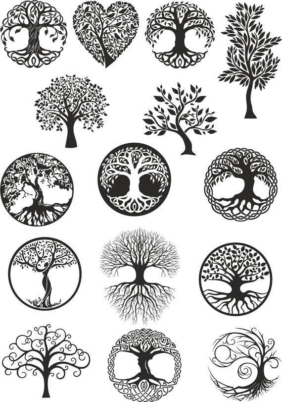 Vector ornament, decorative Celtic tree of life Ve…