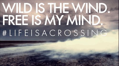 #Wild is the #wind. Free is my #mind #lifeisacrossing