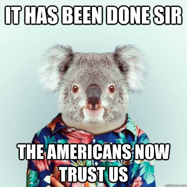 koala memes - Google Search | Funny stuff | Funny animal ...