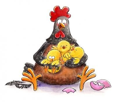 Mother hen and her baby chicks. <3