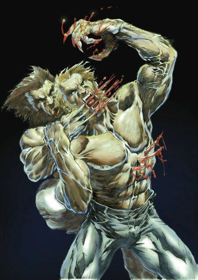 Wolverine vs Sabertooth by Francisco Bertomeu Baidal