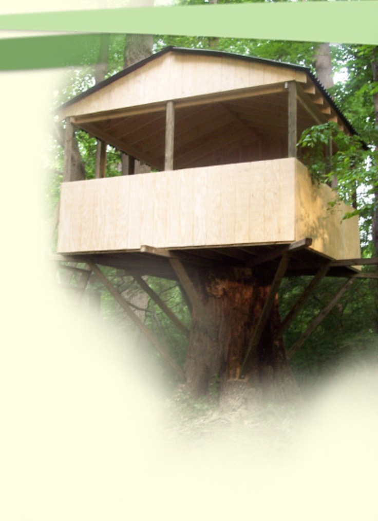 Image detail for -Kids Tree House Designs, Designing Tree Houses