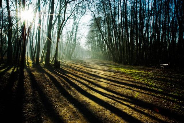 Parco della Vernavola