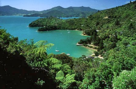 Marlborough-Kenepuru; Marlborough Sound