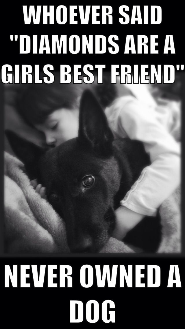"""Whoever said """"diamonds are a girls best friend"""", never owned a dog. So true."""