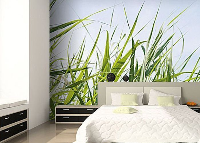 Each Of Our Wall Murals Gives Wallpaper Each Of Our Wall Murals Gives  Scenic Vintage Wallpaper: Buy Wall Mural Scenic Tropical Part 65