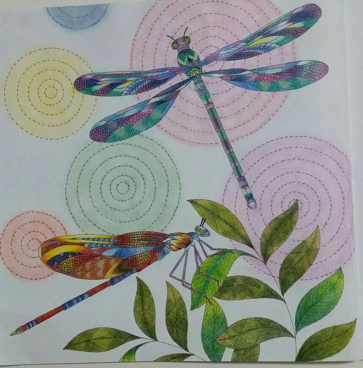 121 Best Animal Kingdom Coloring Book Images On Pinterest