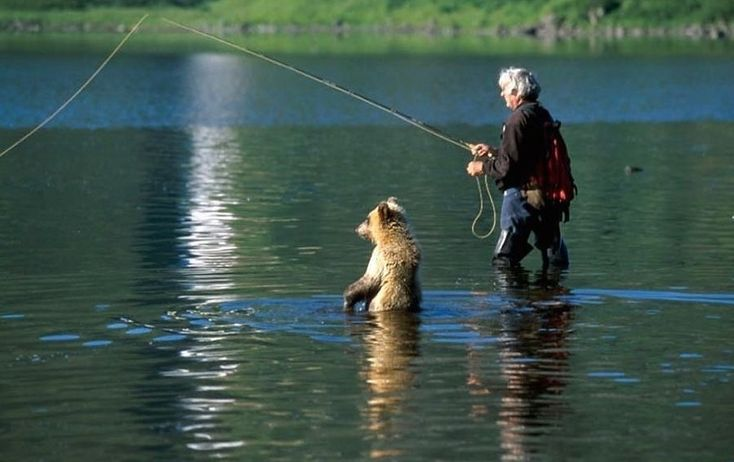 Fishing with a bear! That would be indescribable. I need to step my game up!