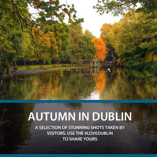 Autumn is a spectacular time in Dublin when the parks, gardens, and tree lined avenues turn to golden hues. Check out these stunning pictures of Dublin in all its seasonal glory! Use #LoveDublin to share your photos.  (Image via @nadooshee)