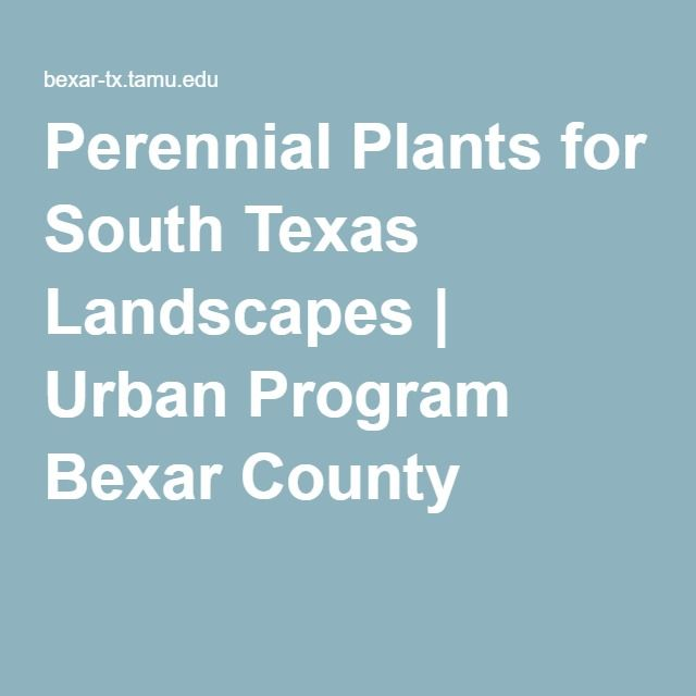 Perennial Plants for South Texas Landscapes | Urban Program Bexar County