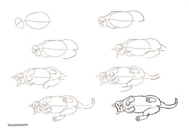 how to draw a cat lying down step by step