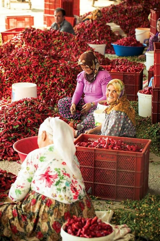 Maras peppers are prepped by day workers - many of them Syrian refugees
