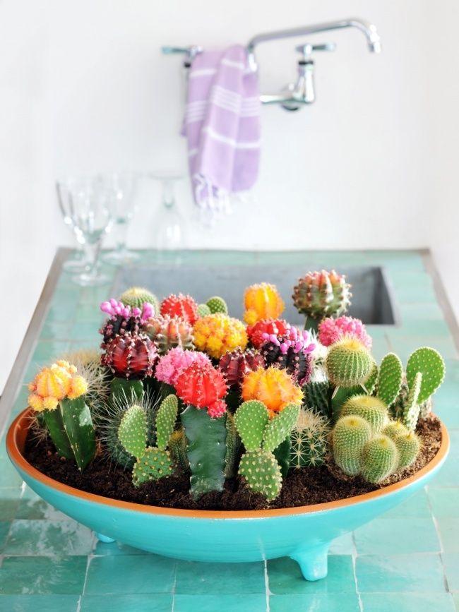 Die besten 25+ Blumenkasten fensterbank Ideen auf Pinterest - indoor garten wohlfuhloase wohnung begrunen