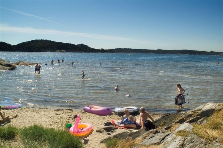 Idylliske omgivelser på Terneholmen innerst i Tingsakerfjorden