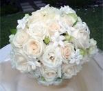 """Romantisch huwelijksboeket bestaande uit Vendela rozen, Fresia's en de de Stephanotis Floribunda oftewel de Bruidsbloem. De roos staat voor """"liefde"""", de Fresia betekent """"groeiend vertrouwen"""" en de Stephanotis staat symbool voor """"geluk"""". De overwegend witte kleur staat voor puurheid, onschuld, natuurlijke liefde, geboorte, stilte. Kortom: een bruidsboeket dat zonder te praten heel veel zegt en voorts... iedereen sprakeloos zal maken. De combinatie van geuren is overigens hemels!"""