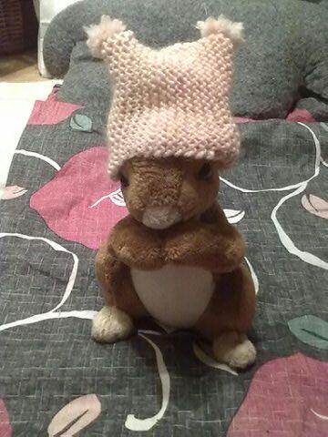 cat's hat on the squirrel plush