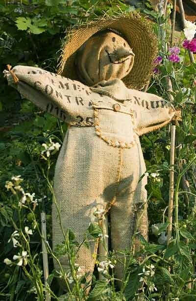Farm Scarecrow woman