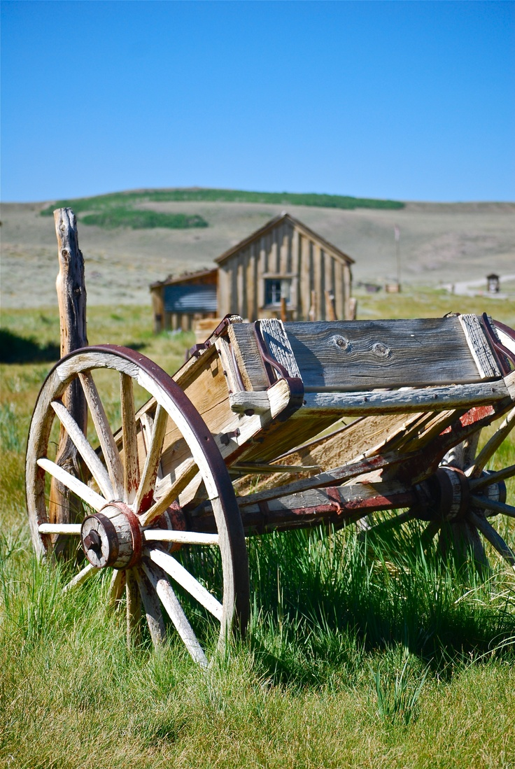 Old wagon - Bodie, CA (S. Caputo)