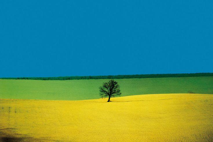 Franco Fontana is an Italian photographer born in Modena, on December, 9th, 1933