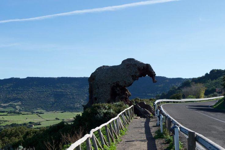 Capo d'Orso, Roccia dell'Elefante und die Neptungrotte - wir zeigen Ihnen die Route entlang der Naturhighlights Sardiniens.