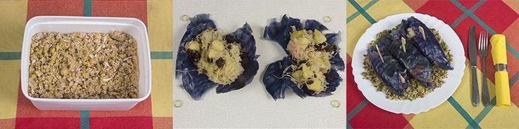 Rode kool wraps met zuurkool, appel en rozijnen, couscous en vegan gehakt | www.Alternatief-Idee.net