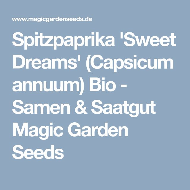 Spitzpaprika 'Sweet Dreams' (Capsicum annuum) Bio - Samen & Saatgut Magic Garden Seeds