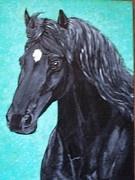 Black Mare Portrait