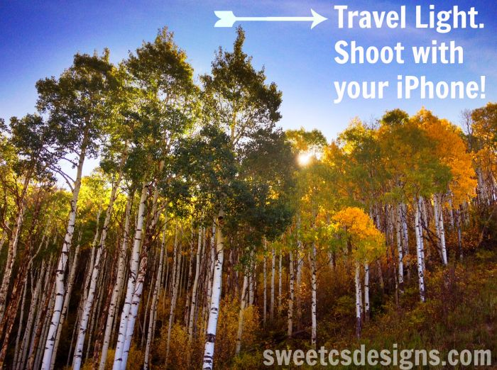 Learn how to get great iphone pictures so you can travel light and skip the big bulky camera! @sweetcsdesigns.com: Photo Iphone, Iphone App, Iphone Travel, Iphone Ipad, Travel Lights, Travel Photo, Iphone Pictures Pro, Baker Baker, Pictures Pro Hdr