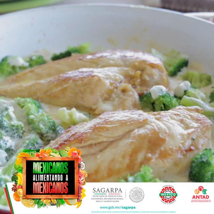 Deleita a tu familia con la receta del pollo en salsa Alfredo, la cual, combina el sabor del queso parmesano y mozzarella con el brócoli, lo que la convierte en una comida completa.