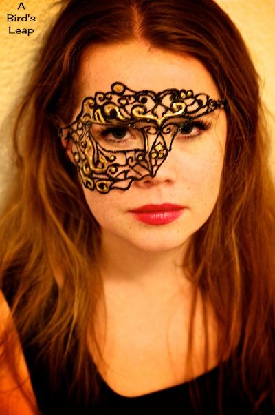 17 best masquerade ball images on pinterest masquerade party mask a birds leap diy lace mask solutioingenieria Images