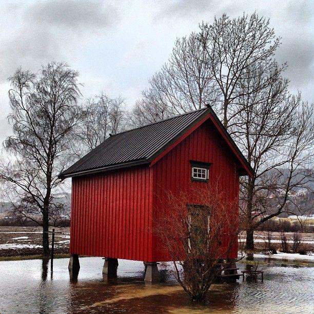 Our storhouse is like an Island :( #water #vann #oversvømmelse #flooding #instaweather #norway #i_love_norway #instaday #instarain #stabbur #melhus #storehouse #rain #vått #weather #wet #adressa #trøndelag #sør_trøndelag #vann_overalt