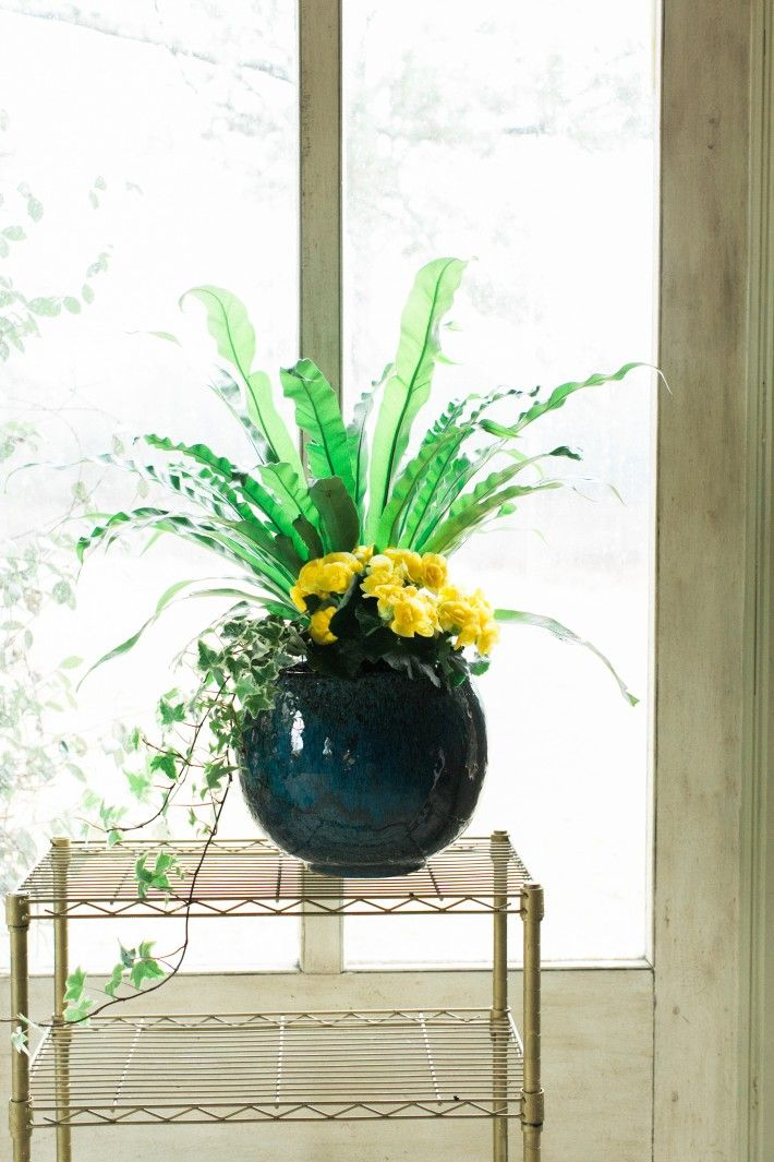 28 Container Gardens for Spring: Day 9
