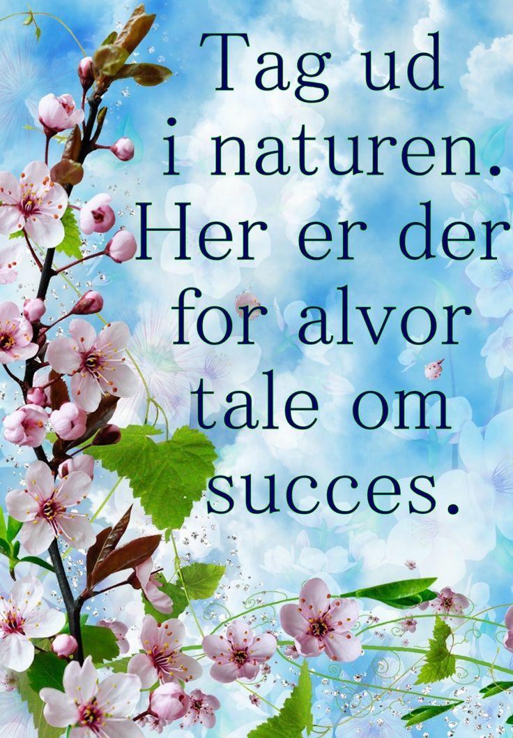 Sagt om succes