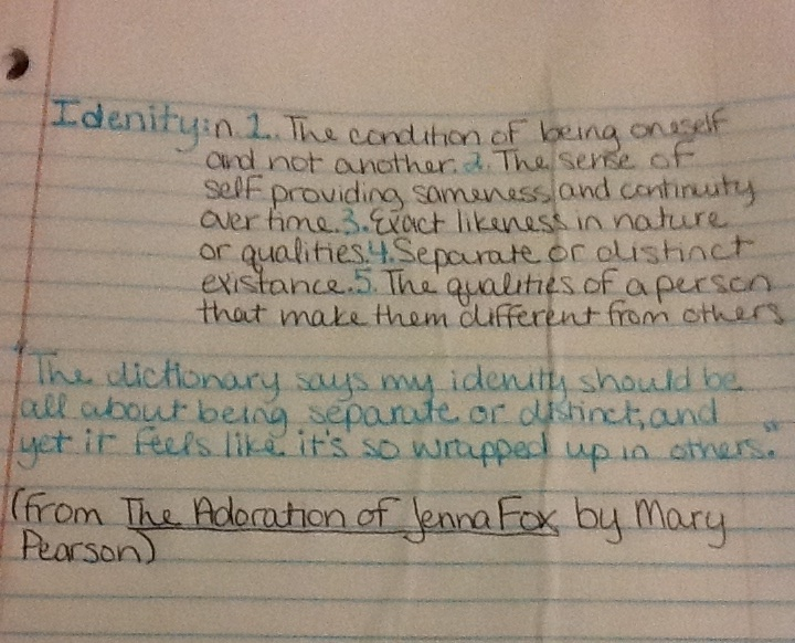 The Adoration of Jenna Fox Summary & Study Guide