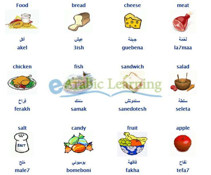 Food in egyptian arabic learn arabic egyptian dialect for Arabic cuisine names