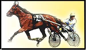 Scottish Harness Racing Harness Racing is a form of horse racing where horses race in a specific gait whilst pulling a two wheeled cart called a Sulky.   Races can be conducted in two different gates; trotting and pacing.  Trotters move with a diagonal gate; the left front and right rear legs move in unison as do the right front and left rear.  Some trotters wear plastic loops around their front legs called hobbles which help them maintain their gate. Trotting racing is not very popular in…