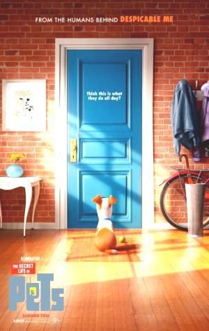 Regarder Now Watch The Secret Life of Pets Online Iphone Stream The Secret Life of Pets Movien Boxoffice The Secret Life of Pets English Complete Filme gratuit Download The Secret Life of Pets 2016 Online gratis Movien #PutlockerMovie #FREE #Pelicula This is FULL