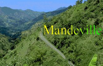 Where my Daddy is from...Mandeville, Jamaica <3