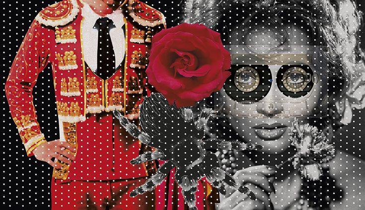 Um bolero seco para deixar o amor apodrecer. Trecho de Tengo miedo torero, romance chileno ainda sem edição no Brasil. Texto: Pedro Lemebel (Tradução de Alejandra Rojas C.). Ilustração: Hallina Beltrão. Suplemento Pernambuco, edição 133, março de 2017.