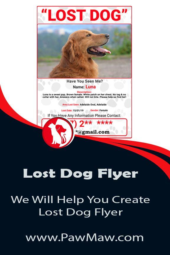 Lost Dog Flyer Losing A Dog Losing A Pet Pets