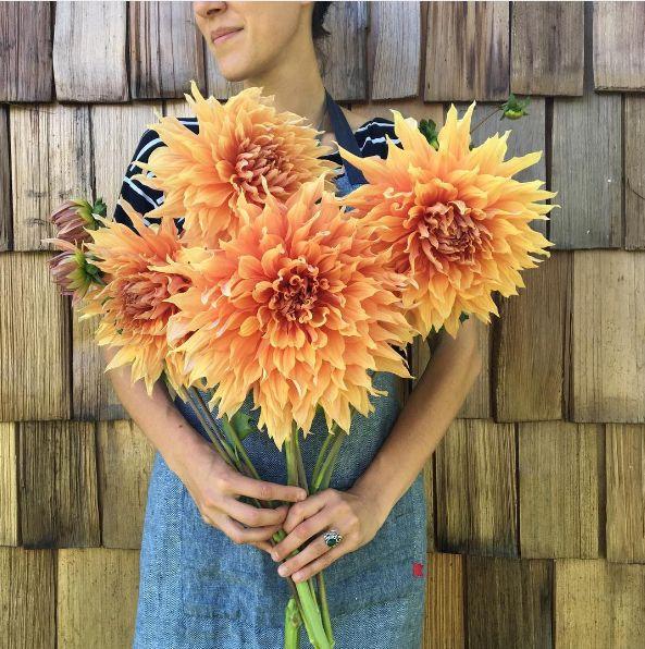 A foto é da Floret Flowers, localizada em Mount Vernon, Estado de Washington (EUA). | As pessoas estão obcecadas com esta foto de um monte de flores num caminhão