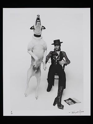 Bowie: Diamond Dogs promotional shoot in 1974