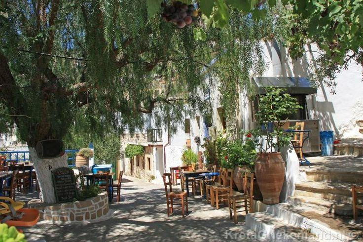Pefki Kreta, Crete  Meer informatie/more info: http://www.kretagriekenland.nl