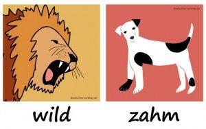 Wortschatz Deutsch: Lernt die wichtigsten deutschen Adjektive mit Bildern in Gegensatzpaaren. Die Bilder machen es ganz leicht, die Adjektive zu lernen.