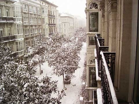 Dato con nieve