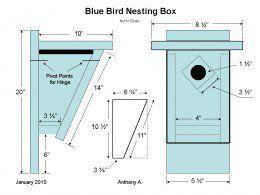 Bluebird Nest Box Plans: How To Build A Peterson Bluebird House ~ Slant Front Style