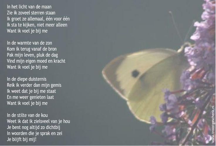 Gedicht In het licht van de maan www.troostgeschenk.nl