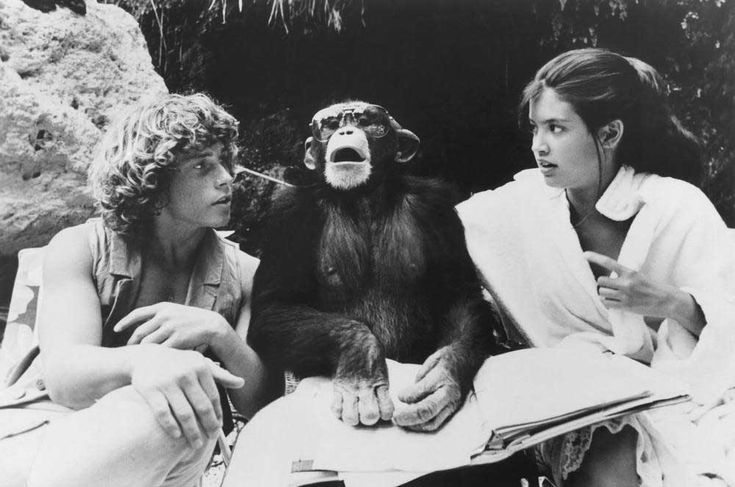 Willie Aames and Phoebe Cates with their co-star Doc on the set of Paradise