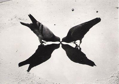 Ernst Haas, 1949