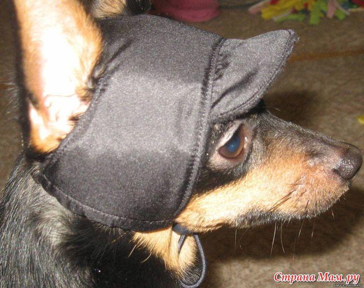 Шапка для собаки с козырьком + выкройка